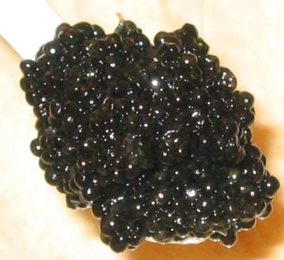 Imported Royal Sevruga Caviar - 4oz size - 4 ounces of Sevruga Caviar