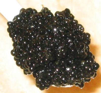 American Osetra Caviar, Sturgeon Caviar, Hackleback Caviar