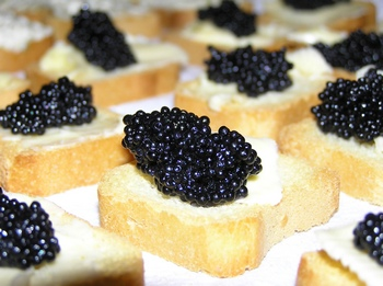 Mini Toasts - toast point caviar toast